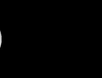 DemeTECH Logo B&W